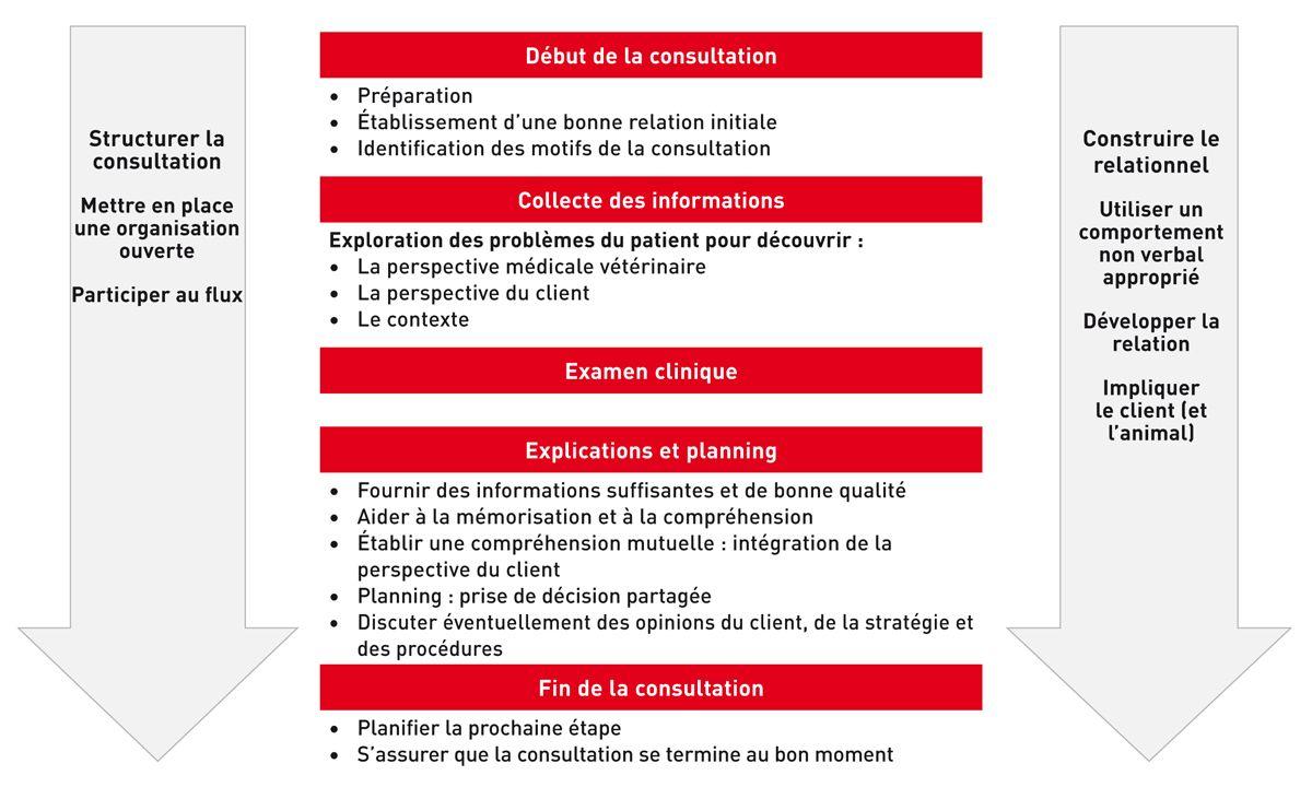 Cadre de la communication avec des exemples de compétences pratiques nécessaires pour chaque aspect de la consultation (adapté du Calgary-Cambridge guide).