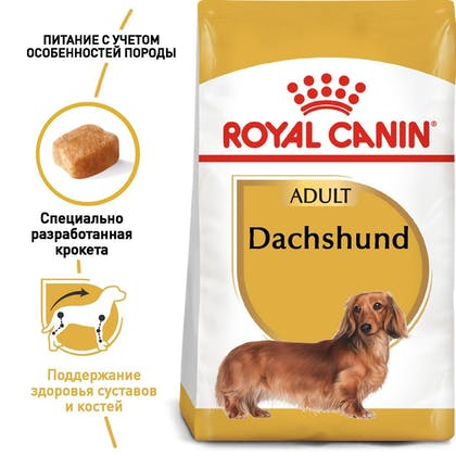 RC-BHN-Dachshund_1-RU.jpg