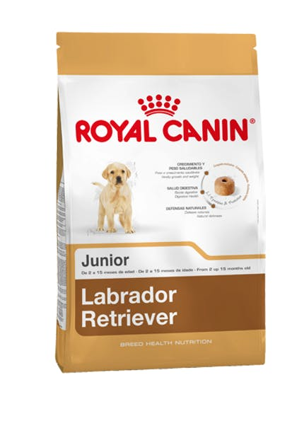 CL-L-Producto-Labrador-Retriever-Junior-Breed-Health-Nutrition-Seco
