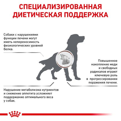 RC-VET-DRY-DogGastroHEP-Eretailkit-B1_3-RU