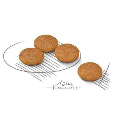 AR-L-Croqueta-Mini-Dermacomfort-Canine-Care-Nutrition-Seco