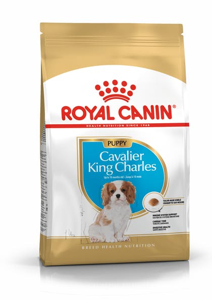 Τροφή σκύλων ράτσας Cavalier King Charles Spaniel άνω των 12 μηνών
