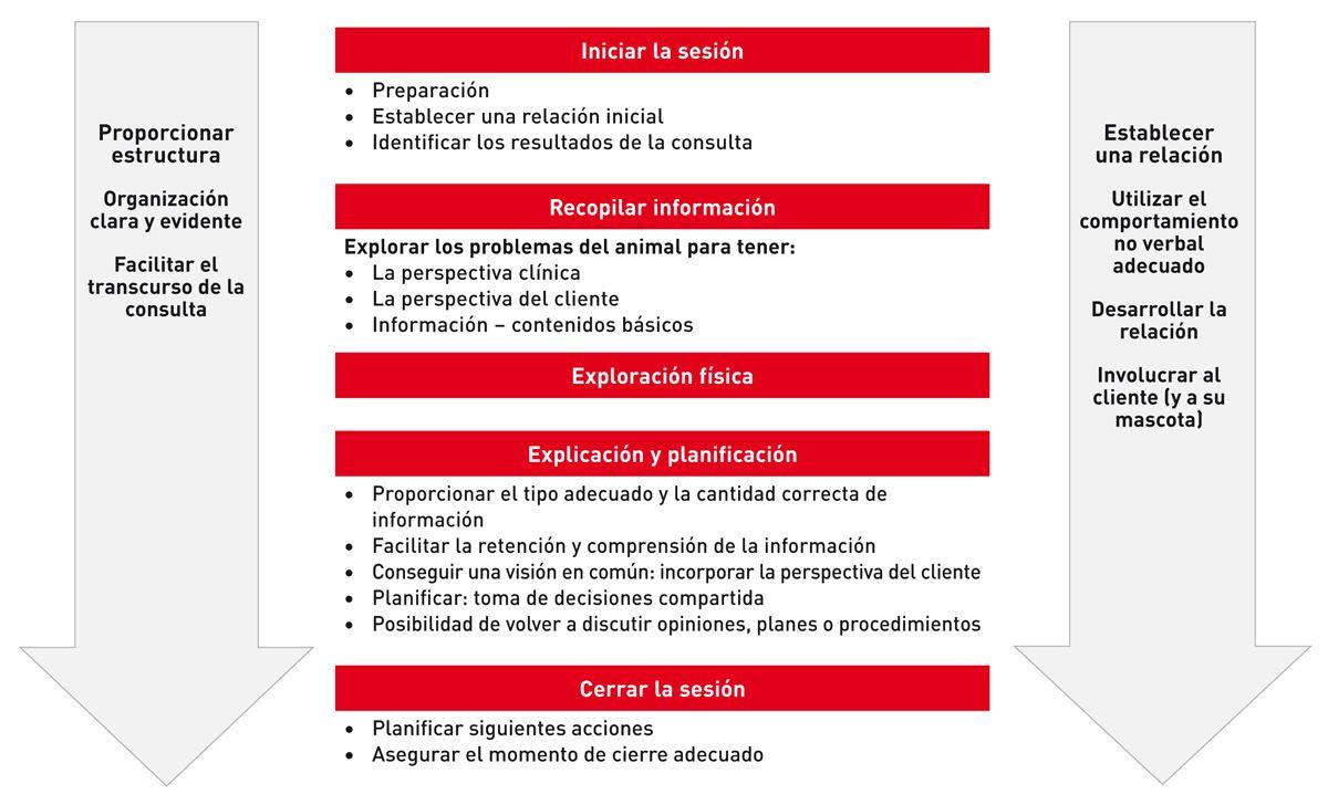 Esquema de comunicación básico en el que se muestra un ejemplo de algunas de las habilidades del proceso de comunicación necesarias para cada uno de los aspectos de la consulta (adaptado de la Guía Calgary-Cambridge).