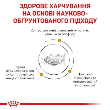 RC-VET-DRY-DogUrinarySOMC-Eretailkit-B1_03