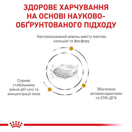 RC-VET-DRY-DogUrinarySO-Eretailkit-B1_03