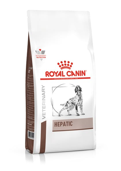 Ξηρά τροφή σκύλων για την ηπατική λειτουργία