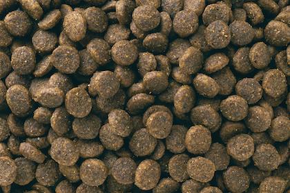 Eukanuba - Puppy Small Breed Kibbles