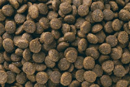 EUKANUBA-Puppy Small Breed Kibbles
