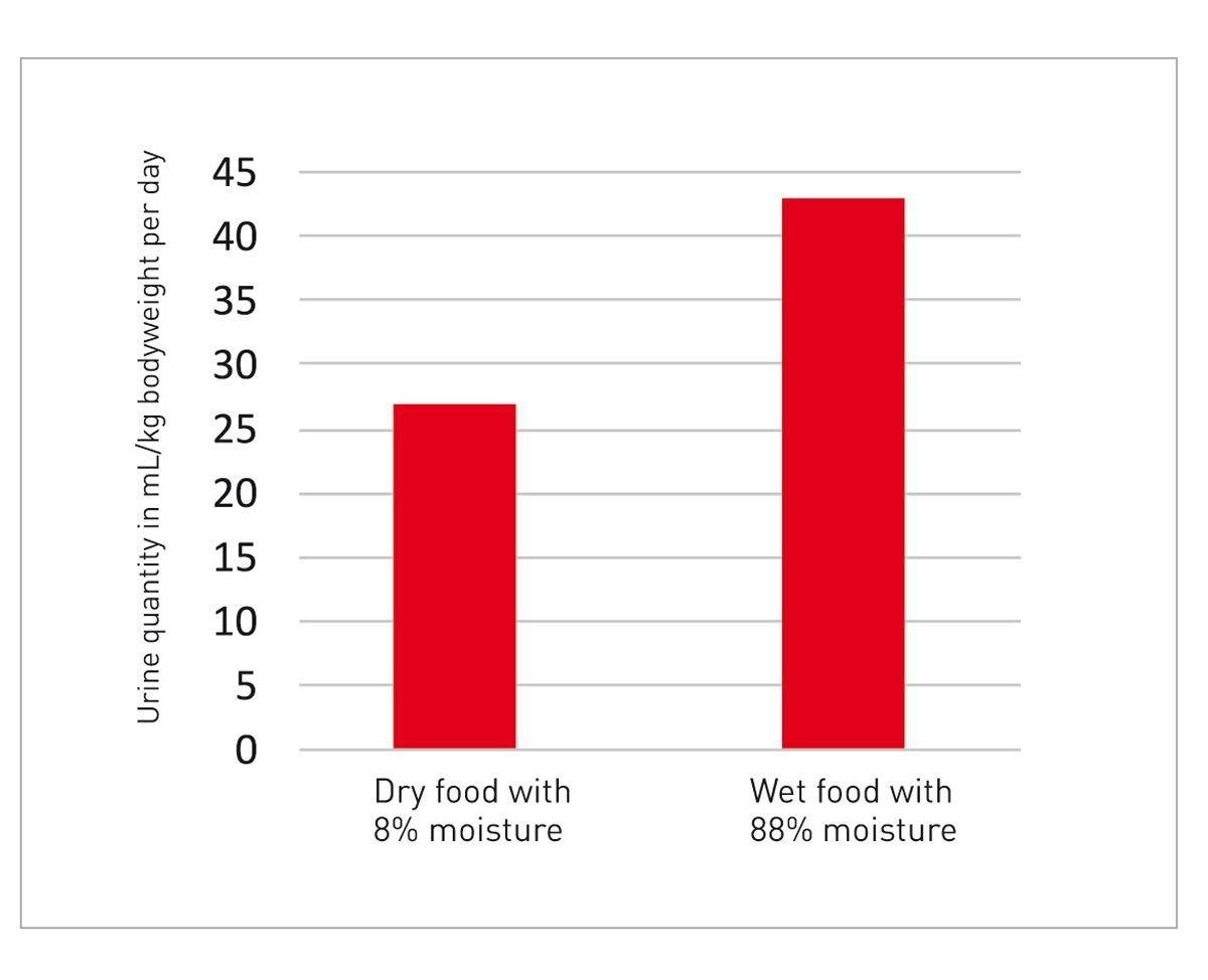 Ilość moczu wydalanego przez koty żywione karmą suchą i mokrą 8 Ilość wydalanego dziennie moczu w ml na kg masy ciała kota Karma sucha o wilgotności 8% Karma mokra o wilgotności 88%