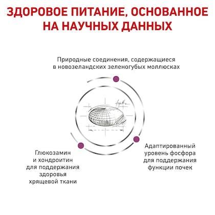 RC-VET-DRY-CatMobility_rus_new4