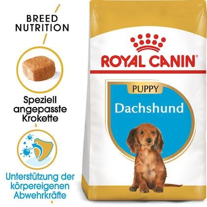 RC-BHN-Puppy-Dachshund-Trockennahrung_Hero-image_DE