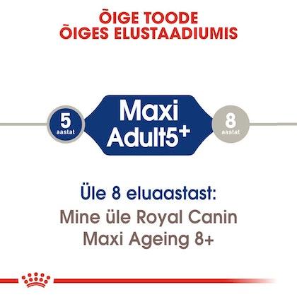 RC-SHN-AdultMaxi5-CV-EretailKit-1-et_EE