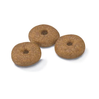 AR-L-Croqueta-Mini-Ageing-12+-Size-Health-Nutrition-Seco