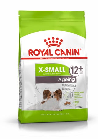 X-Small Ageing 12+
