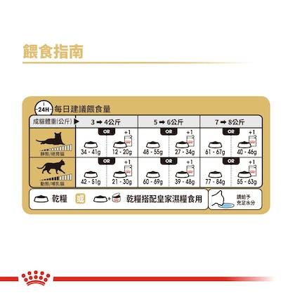 豹貓成貓BG40_餵食指南