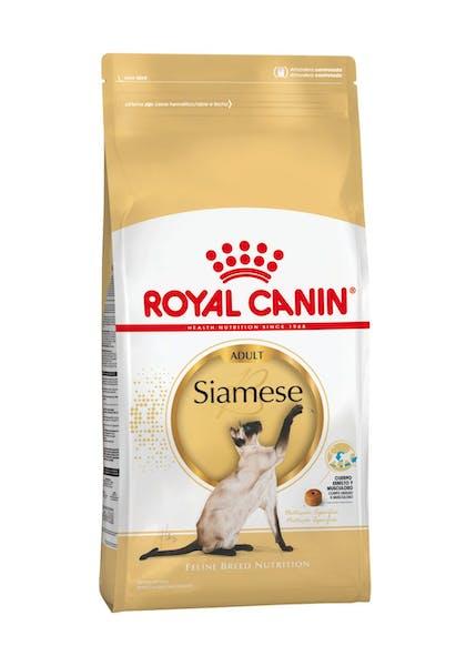 AR-L-Producto-Siamese-Feline-Breed-Nutrition-Seco