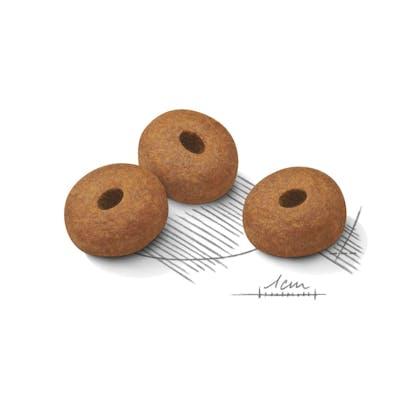 AR-L-Croqueta-Medium-Weight-Care-Canine-Care-Nutrition-Seco