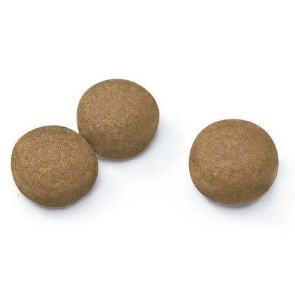 AR-L-Croqueta-Maxi-Adult-Size-Health-Nutrition-Seco