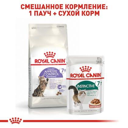 RC-FHN-AppetiteControlSterilised7_6-RU.jpg