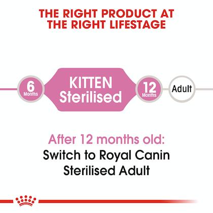 FHN-KittenSterilised-CV-EretailKit-1