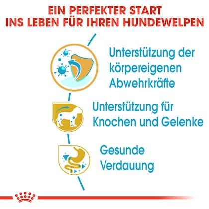 RC-BHN-PuppyDachshund-Trockennahrung_Vorteile_DE