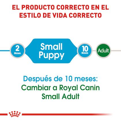 RC-SHN-PuppySmall-CV-EretailKit-1