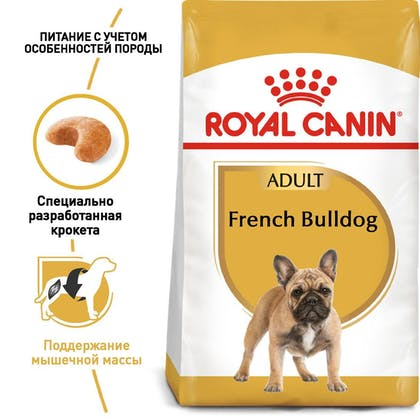 RC-BHN-FrenchBulldog_1-RU.jpg
