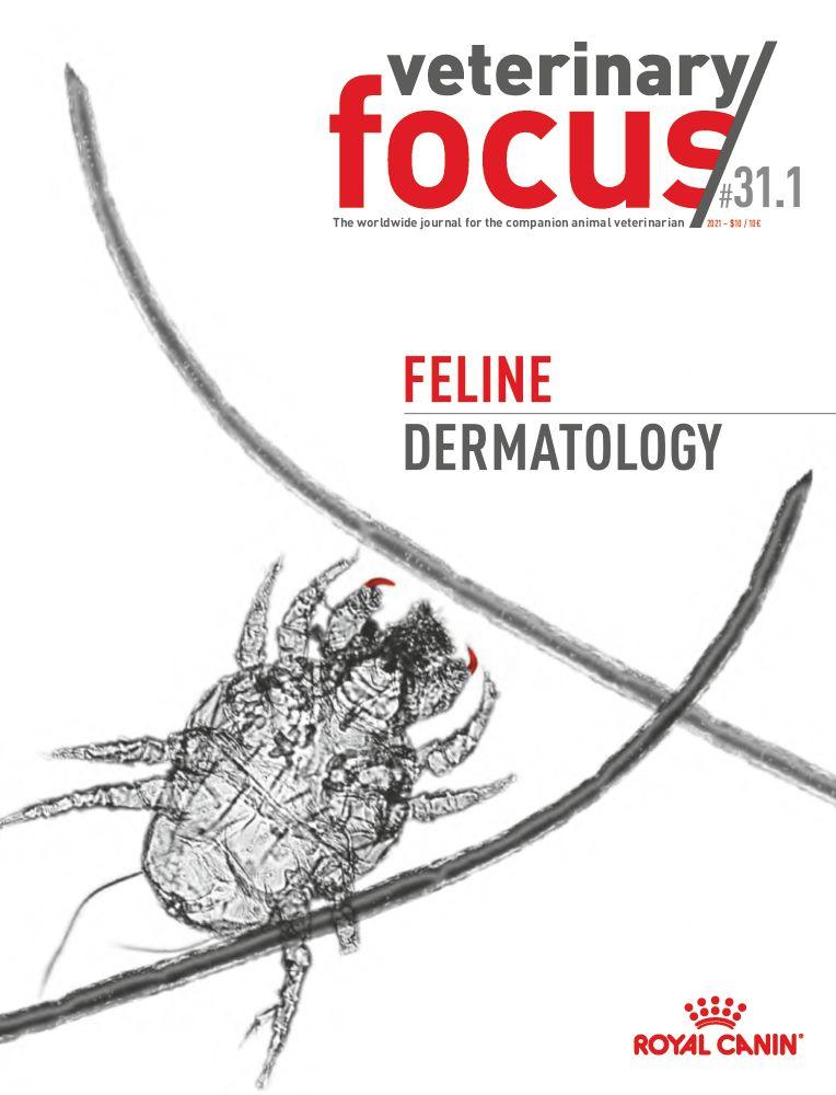 Vet Focus Issue 31.1 Feline Dermatology