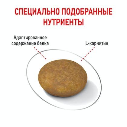 RC-SPT-DRY-LightWeightXS_rus5