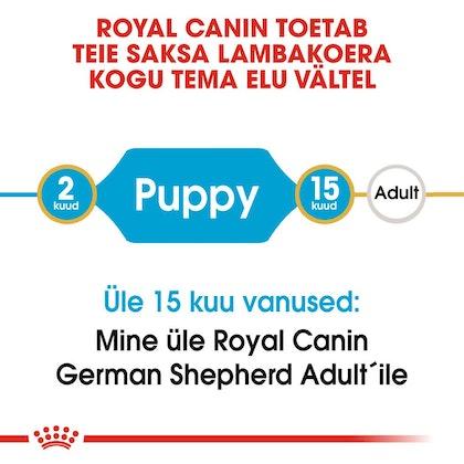 RC-BHN-PuppyGS-CM-EretailKit-1-et_EE
