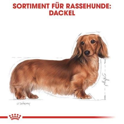 RC-BHN-Dachshund-Trockenfutter_Sortiment_DE