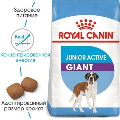 HI_SHN_GIANT_JUNIOR ACTIVE_ru_4