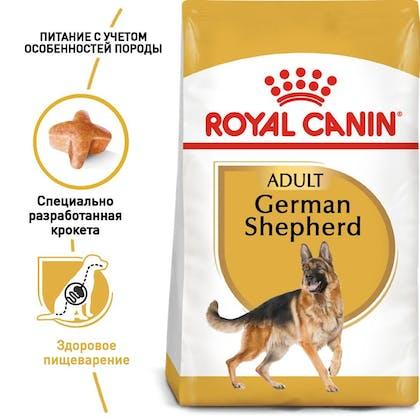 RC-BHN-GermanShepherd_1-RU.jpg