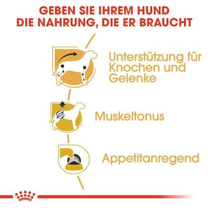 RC-BHN-Wet-Dachshund-Trockenfutter_Vorteile_DE