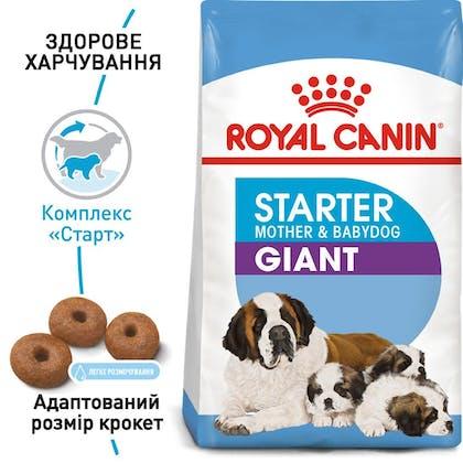 RC-SHN-PuppyGiantStarter_1-UA.jpg