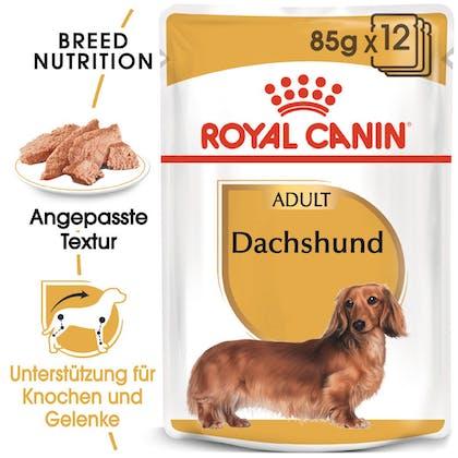 RC-BHN-Wet-Dachshund-Feuchtnahrung_Hero-Image_DE