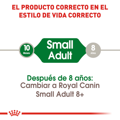 RC-SHN-AdultMini-CV-EretailKit-1