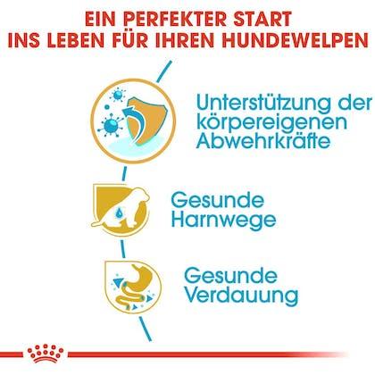RC-BHN-Puppy-Dalmatian-Trockennahrung_Vorteile_DE