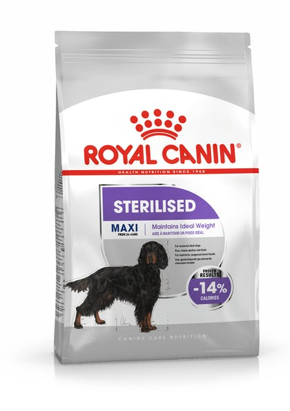 MAXI STERILISED CCN PACKSHOT
