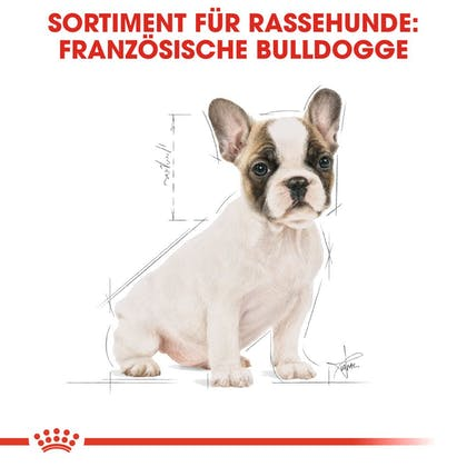 RC-BHN-Puppy-French-Bulldog-Trockennahrung_Sortiment_DE