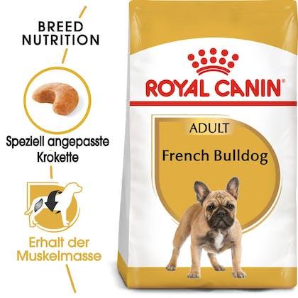 RC-BHN-FrenchBulldog-Trockennahrung_Hero-Image_DE