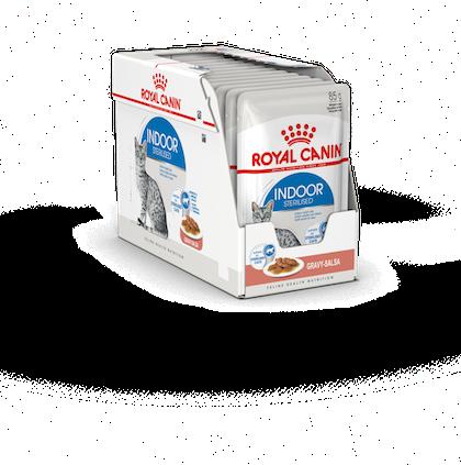 FHNW20 - INDOOR STER-GRAVY-PACKSHOT-BOX_O-B1S