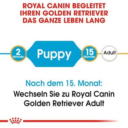 RC-BHN-Puppy-Golden-Retriever-Trockennahrung_2-Monate_DE