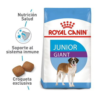 GIANT JUNIOR COLOMBIA 1