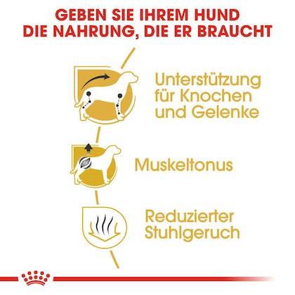 RC-BHN-Dachshund-Trockennahrung_Vorteile_DE