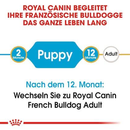 RC-BHN-Puppy-French-Bulldog-Trockennahrung_2-Monate_DE
