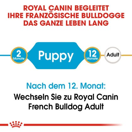 RC-BHN-Puppy-French-Bulldog-Trockennahrung_2-Monate_DE