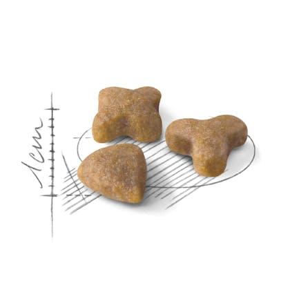 AR-L-Croqueta-Sensible-Feline-Health-Nutrition-Seco