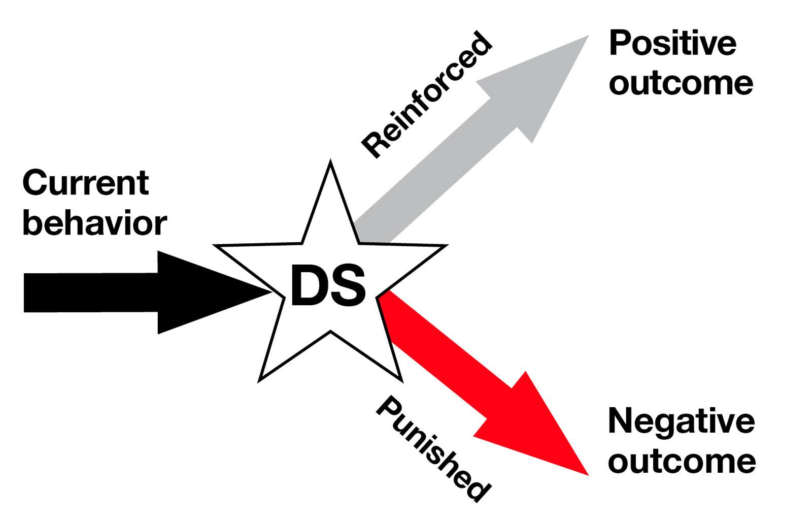 Figure 4. Operant response.
