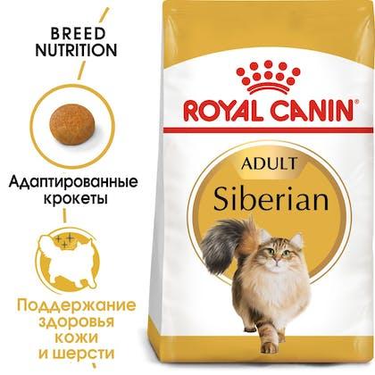 Siberian Adult hero